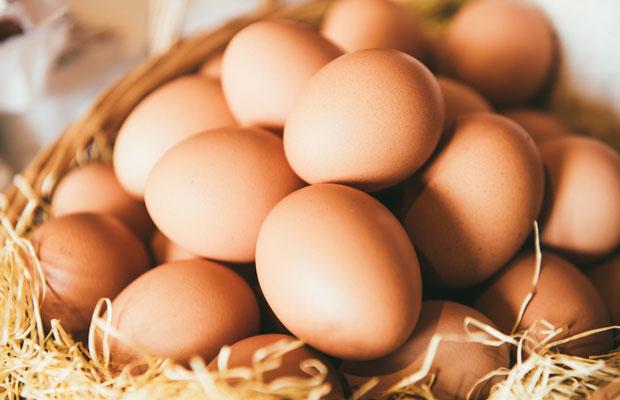 お菓子をつくるための特別な卵〈ピュアエッグ〉。一部店頭販売もしています。