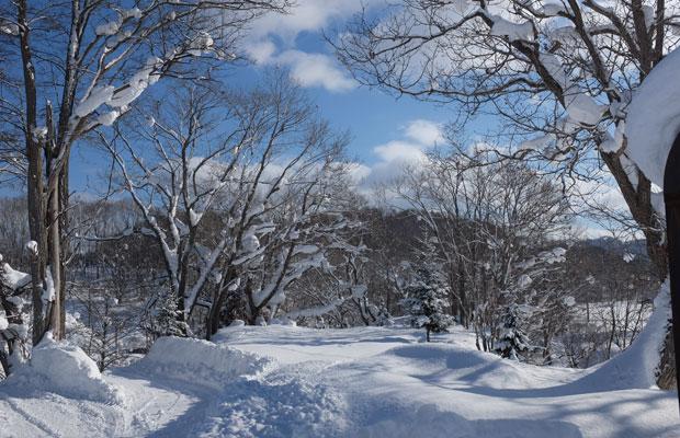 厳冬期は日中も氷点下の岩見沢。東京との気温差は10度くらいあって、羽田空港に降り立つと冬でも暖かく感じる。