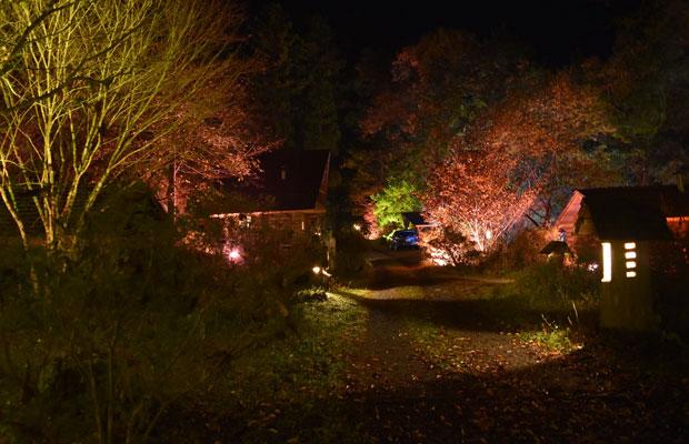 小来川にあるログハウスの宿泊施設〈Woodsmans Village〉もライトアップで幻想的な雰囲気に。(写真提供:upLuG)