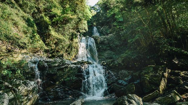 平成の名水百選」に選ばれた水をたたえる古座川