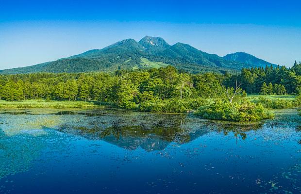妙高山を映し出すいもり池。周辺は遊歩道があり、その季節季節の植物を愛でながら散策できます。