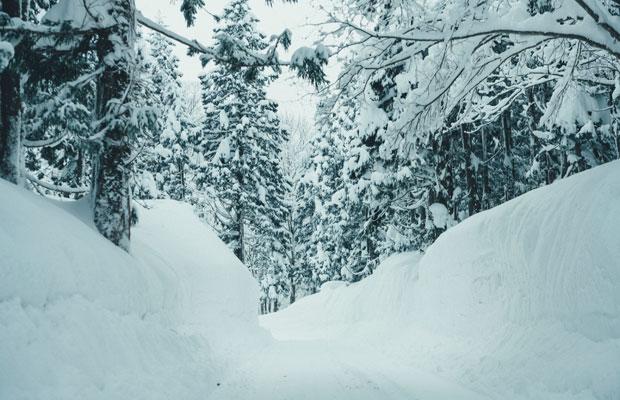 ホテルに向かう道中、両側から迫り来る雪壁の間を抜けて向かいます。