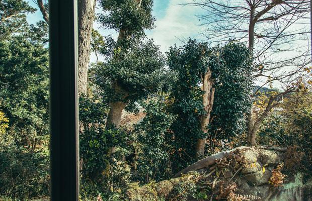 鎌倉・扇ヶ谷にある〈テールベルト&カノムパン〉の2階席に開かれた大きな窓からは、山に囲まれた鎌倉らしい風景が望める。