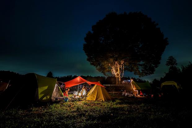 〈一番星ヴィレッジ〉 無農薬の牧草地が広大なキャンプ場に! 今年も千葉に期間限定オープン
