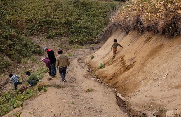 買った山は木が伐採されたあとの荒地だった。ブルドーザーが通った道があり、山肌が出ている箇所もある。