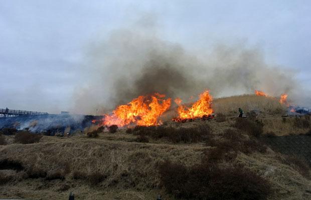 こちらは草千里展望所の野焼き。草千里よりも間近に火の勢いを感じます。