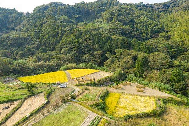生活排水はそのまま自分たちの米を育てる棚田へ。
