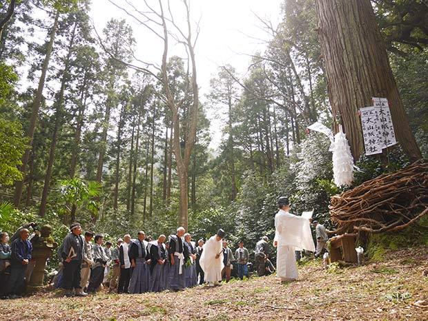 最後には、厳かな空気のなかで祈祷が行われます。右にはカズラを巻きつけた御神木が。