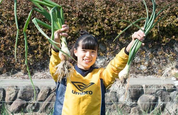 まずは玉ねぎ収穫!