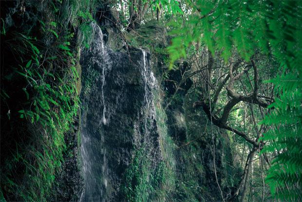 10メートルほどの落差ある滝