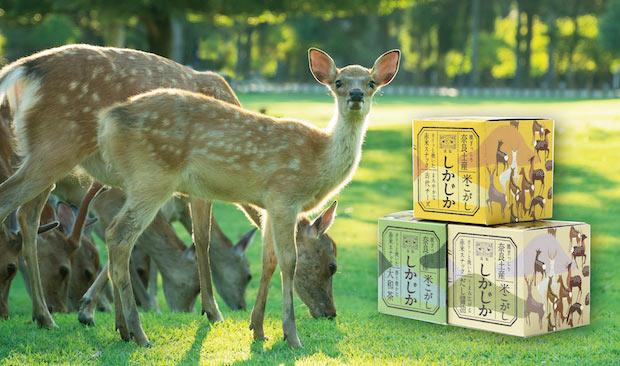 """新・奈良土産〈しかじか〉。まるで""""持ち帰れる奈良公園""""。鹿型スナックがぎっしり!"""