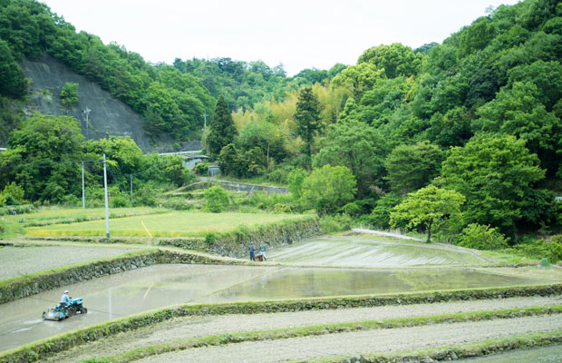 小豆島の真ん中にある中山地区。4月から田植えが始まります。