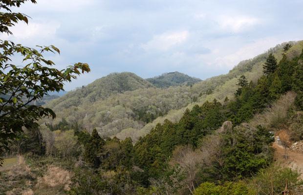 相模原市に位置する藤野地区。四方を山々に囲まれ豊かな川と湖があるエリア。
