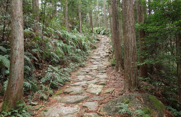 熊野古道の馬越峠。