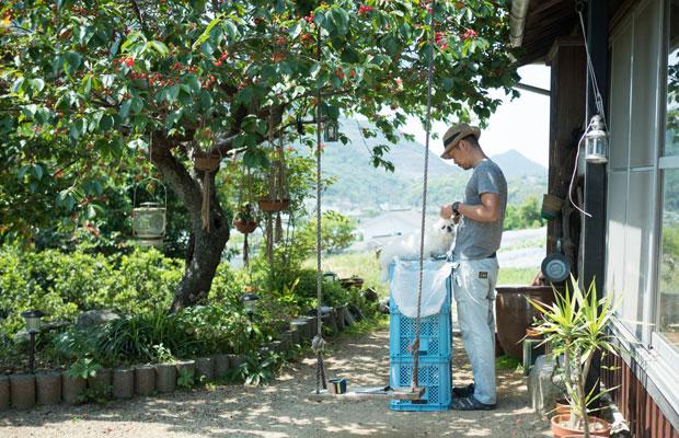 サクランボの木の下で愛犬の散髪。昔はトリマーさんにお願いしていたけど、小豆島に来てからはお金もないし自分たちでカット。