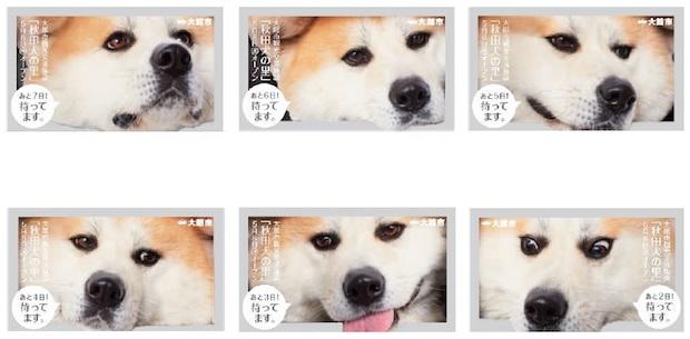 〈秋田魁新報〉のカウントダウン広告