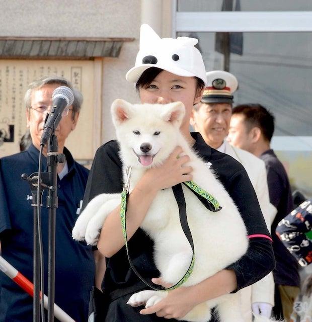 大館駅観光駅長チームの一員でもあるおもちちゃん