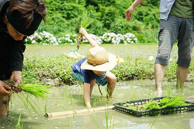 子ども達も率先して田植えのお手伝いをしてくれました。