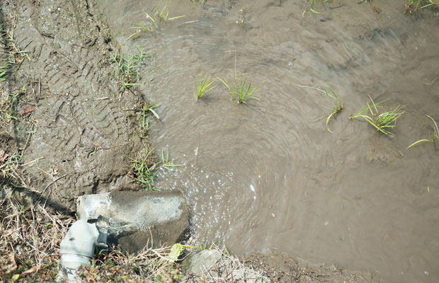絶えることなく流れる中山の湧き水。