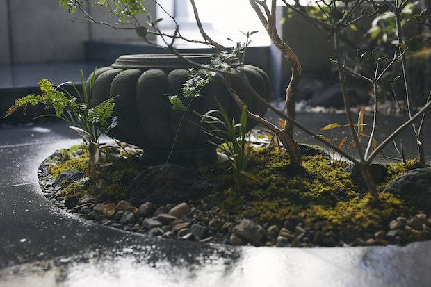 植栽やつくばいが配された中庭
