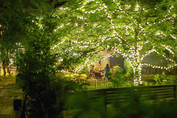 ライトアップされたツリーなど樹木に囲まれて滞在