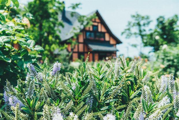 〈薪小屋〉の外観