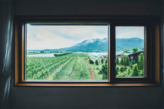 窓からブドウ畑や角田山が一望できる