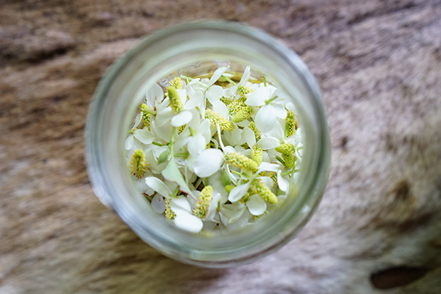 ドクダミの花で化粧水づくり。