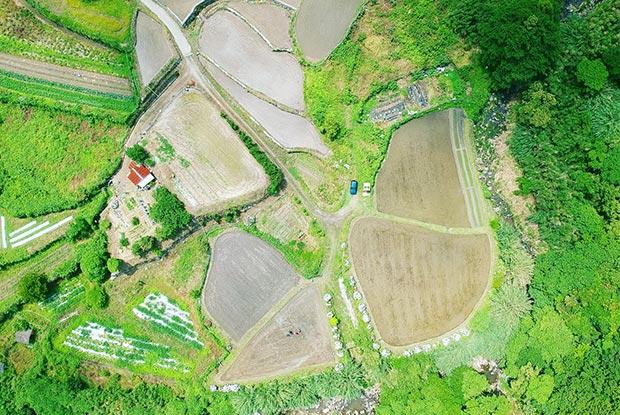 ドローンで撮影した糸島の風景
