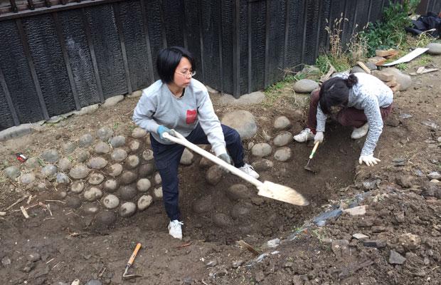 庭園調査で、建物周囲に勾配のある6~7段の玉石積み遺構を発見。今回は排水の関係で復元できませんでしたが、そのまま地中に保存することに。