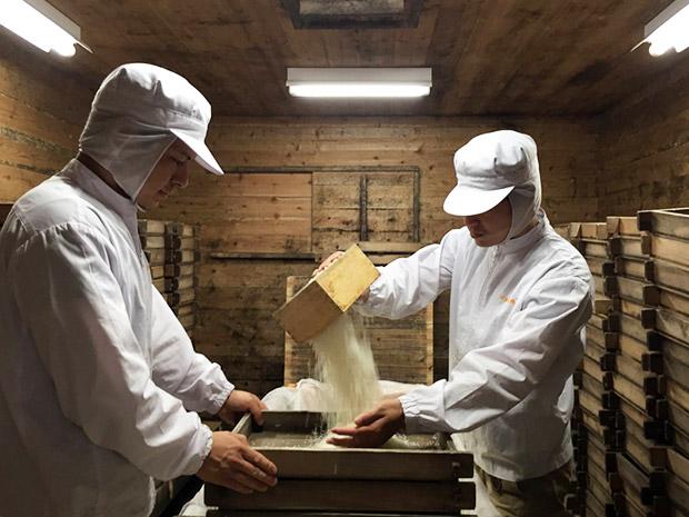 米麹をつくるため、蒸し米をもろぶたに入れる作業。機械化が主流となっている今でも、川添酢造では手作業で。
