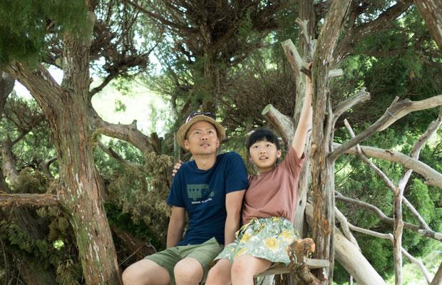 フリオ・ゴヤさんによる『自然の目「大地から」』。古民家の敷地内にある2本のイブキの木を利用してつくられたツリーハウス。