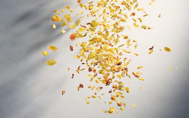 ブルームシャワーパック 850円(税別)色は赤・ピンク・黄の3種。香料使用・微香