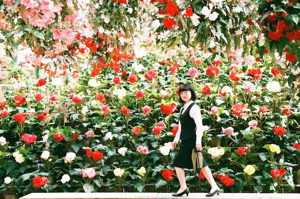 満開の花の前の島根OL