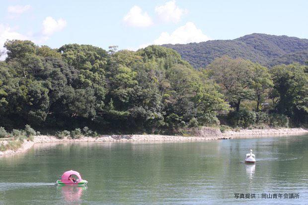 湖上の桃ボートVS白鳥ボート