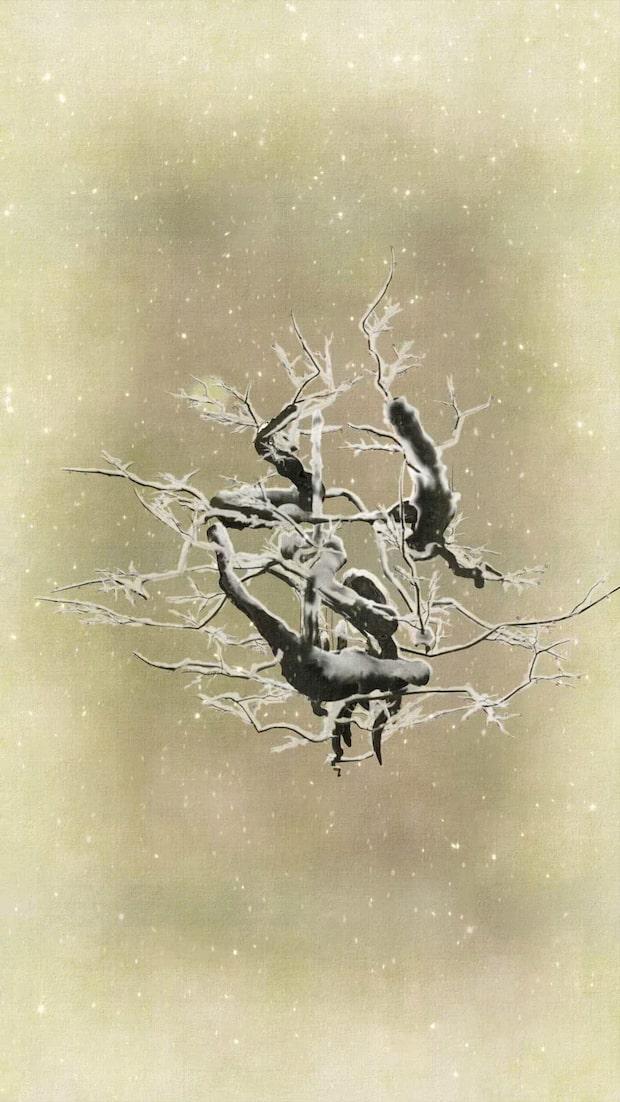 チームラボ『生命は生命の力で生きている』2011 Digital Work 6 min23 sec. (loop), 書:紫舟Courtesy of Pace Gallery