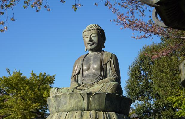 護国寺境内にある大仏。やや小ぶりだが、柔和な顔つき。