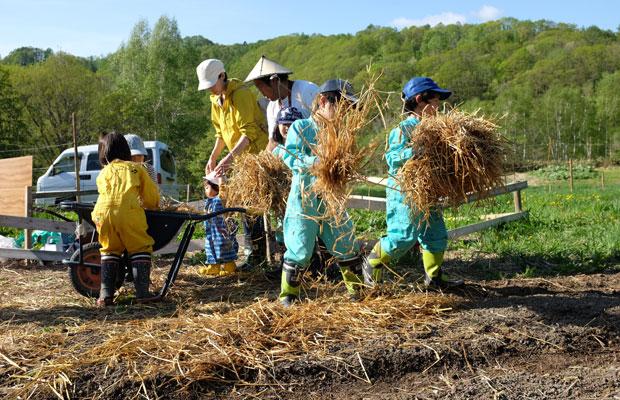 昨年は、農家の阿部恵さんの畑で「トシくんと畑で英会話」を企画。農作業しながら子どもたちが英会話を学ぶというワークショップ。