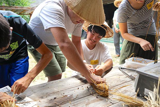 藁苞に大豆を入れ藁で蓋をするようにして結ぶ