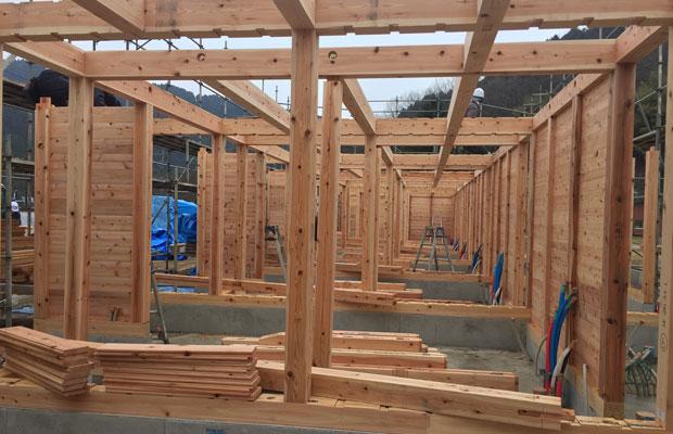 里山ながや・星野川の1階部分を施工中。この写真で見えている土台・柱・壁、すべてが八女の杉と檜。