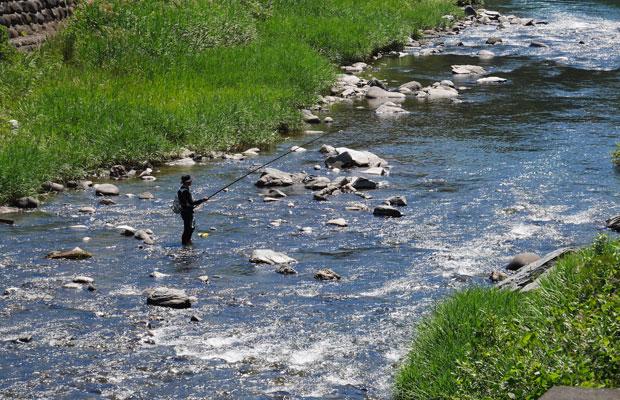 建物の目の前を流れる星野川で鮎釣り。上流ではヤマメも釣れる自然豊かなエリア。