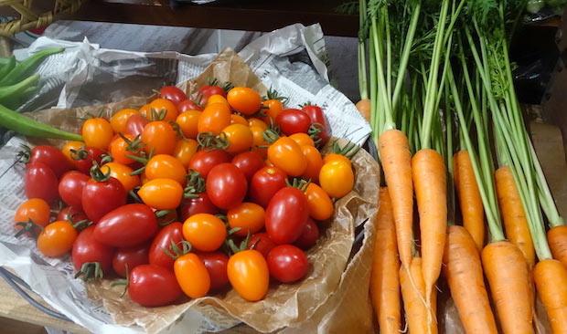 〈とうほく食育実践協会〉が販売する野菜。この日は宮城県の秋保や美里の農家の野菜がそろっていました。