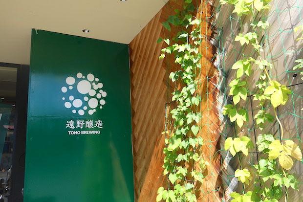 東北電力が遠野市内の店にプランターで提供し、グリーンカーテン運動を行なっている。