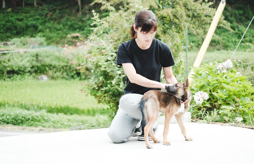 この秋から猟に出ることを目指し、現在訓練中の猟犬・ベリー(メス・4か月)と一緒に山へ。