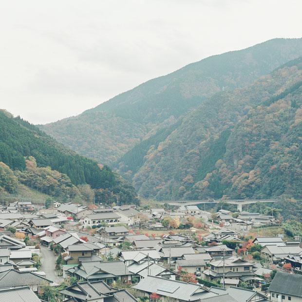 山林の中にある平野部に住宅が密集している。