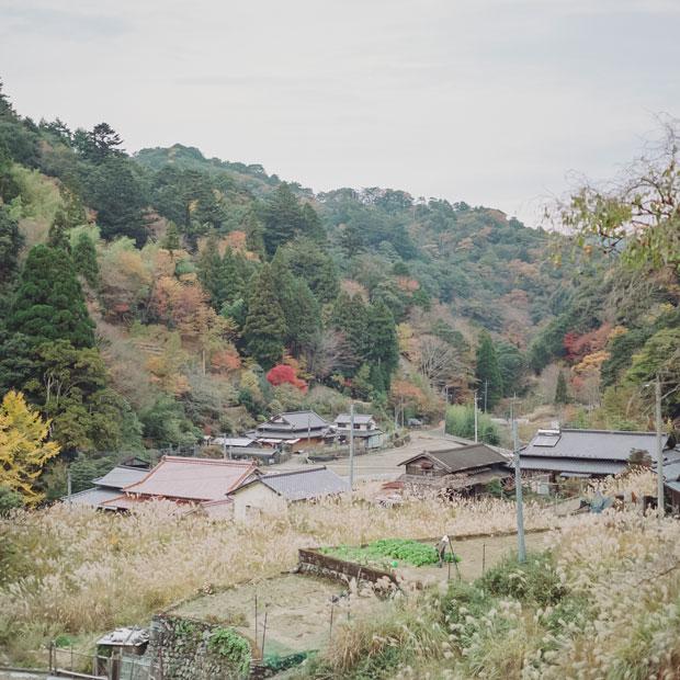 望生さんが生まれ育った、日添集落。ここがふたりの原点。