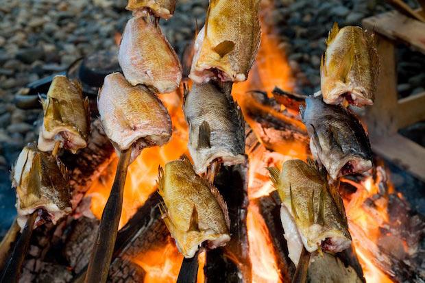 現地ではこのようにして焼いた魚を〈わっぱ煮〉に使います。