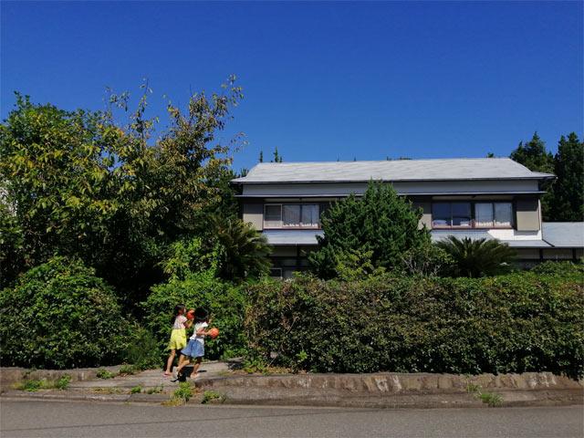 植物に囲まれた我が家。築50年以上
