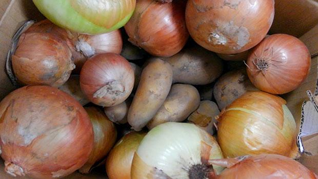 段ボール箱いっぱいの野菜。