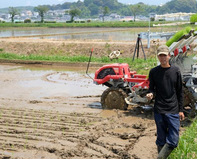 その知人も参加した山田錦の田植えの様子。「酒づくり3年目の今年からこうした米づくりの過程も見学してもらおうという話になりました。参加者にはとても喜んでもらえましたよ」と福島さん。